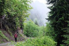 #macahel #artvin #turkey #türkiye #doğayürüyüşü #doğa #yürüyüş #tatil #gezi #seyahat #atlasdergisi #natgeotravel #baskarota #yasasinbaskaseyler #trekking #hiking #travel #travelawesome #nature #naturelovers