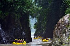 White Water Rafting at Rio Pacuare - One of the Best in the World. Soo beautiful!