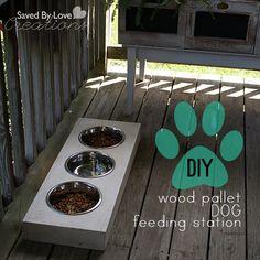 DIY Dog Feeding Station from #woodpallets (Para hacer un sembrador como en discovry gateway)