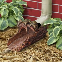 Gutter Buddies are beautifully hand painted and sculpted from resin. Simply place in front of your downspout to add some flare around your gardens or home. Gnome Garden, Garden Paths, Garden Art, Garden Design, Outdoor Landscaping, Front Yard Landscaping, Outdoor Gardens, House Landscape, Landscape Design