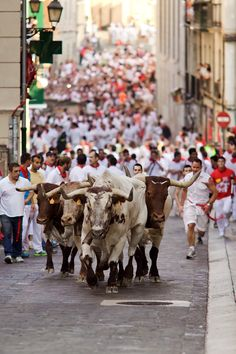 """Run With the Bulls in Pamplona...and 80 other kick ass travel """"things to do and see""""."""