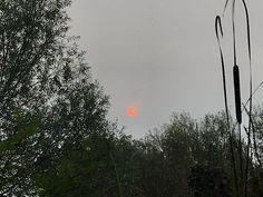 """[bert vroegop] op Twitter: """"Een heel bijzondere #zon, zoeven (9:30 uur) in Goes! https://t.co/t2RCsPkTMt"""""""