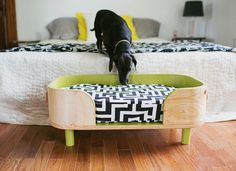 From fluffy dogs to colorful parrots, animals bring a dose of happiness into our homes. But owning a pet has its challenges, and many time-constrained homeowners struggle to control pet hair, eliminate odors, and find a place to store food and accessories. Minimize the stress of pet ownership with these 10 genius hacks, and you'll become an all-star pet parent in no time.
