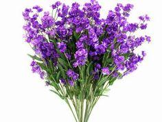 Silk Baby Breath-Purple-dz/pk