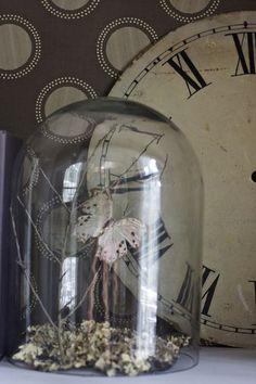 ...wallpaper backdrop, clock, cloche, butterfly....love all of it!