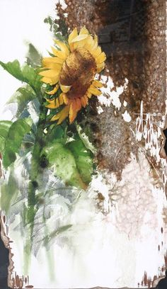 Daum 블로그 - 이미지 원본보기 Watercolor Flowers Tutorial, Watercolor Sunflower, Sunflower Art, Watercolor Print, Watercolour Painting, Beautiful Flowers, Art And Craft Shows, Art Aquarelle, Watercolor Paintings