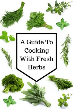 How to cook with fresh herbs Take your cooking to a whole new level. Cooking with fresh herbs is easy! This guide has everything you need to know about cooking with fresh herbs! Cooking With Fresh Herbs, Cooking Herbs, Cooking Tips, Cooking Recipes, Healthy Recipes, Healthy Herbs, Cooking Classes, Cooking Games, Cooking Dishes