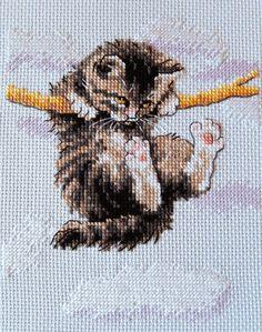 igła z fajką: Powieszony kot...