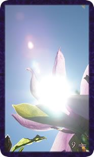 Gratitude tarot, all cards align with four elements.  Wonderful!