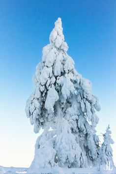 In Finland, this kind of snow is called Tykky. Mount Everest, Photo Galleries, Snow, Seasons, Explore, Mountains, Gallery, Winter, Nature