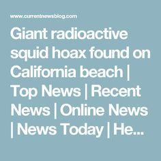 Giant radioactive squid hoax found on California beach | Top News | Recent News | Online News | News Today | Headline News