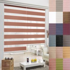 B&C  T Zebra shade Home Window blind Customer size Order  Double Roller blinds  #BC