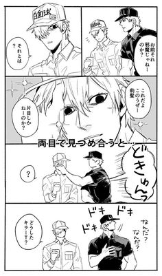 黄金のイチカワ (@namaichikawa) さんの漫画   157作目   ツイコミ(仮)