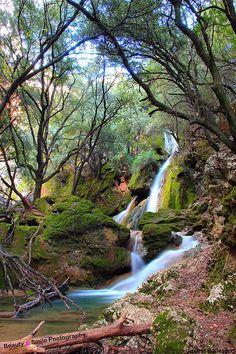 Sslt des Freu, Orient ( Mallorca)