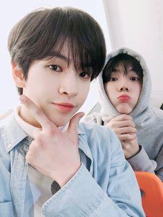 starshipz allen and seongmin icon ♡ don't reupload! Woo Bin, My Youth, Starship Entertainment, Seong, Kihyun, Kpop Boy, Kpop Groups, My Sunshine, Fandoms