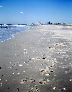 View of Atlantic City from Brigatine Beach