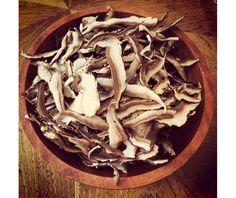 Buy quality organic reishi mushroom online in Canada