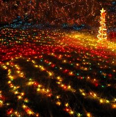 This is a great picture of Christmas lights that is very hard to capture well.