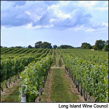 Long Island | New York | Wine Country Travel | Dining and Travel | Wine Spectator