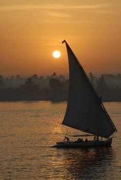 Sailing on a feluka at sunset from the Steinberger hotel in Luxor Egypt.... I recommend it! LH