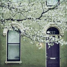 The apple blossom door.
