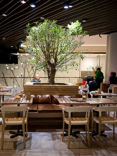 """2012 - The decor of the restaurant is adorable and I love the foods (to death) ! """"Enter through a ... at Stuzzi Bar/Spiedo Restaurant, Westfield Sydney ."""