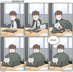 The Adventures of Business Cat - Keyboard