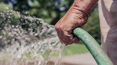 Gartenarbeit als Ausgleichstraining