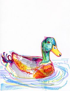 An informal survey of some people's most loved animals as they commission me through my Kickstarter. Illustration Sketches, Art Sketches, Illustrations, Art Journal Inspiration, Art Inspo, Duck Art, Ink Drawings, Marker Drawings, Marker Art