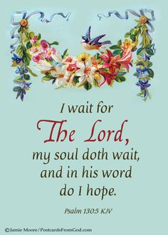 Dear Lord, all my hope is in you.    www.facebook.com/PostcardsFromGod