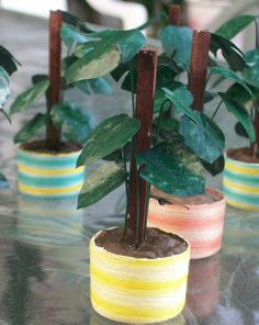 how to: plant pot
