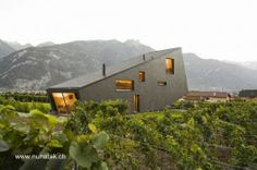Vineyard house in Swiss - Casa contemporánea con una posición inusual en un valle de cultivos en Suiza