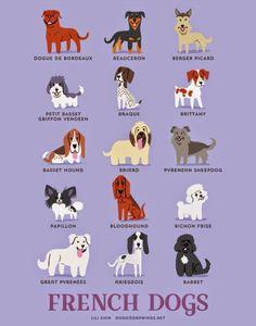 Você sabe a nacionalidade do seu cachorro? Não tem muita certeza? Essas ilustrações bacanas feitas pela Lili Chin vão te ajudar a descobrir! Além disso elas