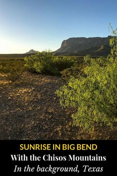 Nadir in Far West Texas, USA | Sunrise in Big Bend, with the Chisos Mountains in the background. Photograph, Ann Fisher. #anncavittfisher #travel #travelblogger #Texas #USA