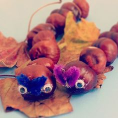 We recently collected loads of conkers whilst out on a walk so I have been looking at different ways of using them. Whilst searching on Pinterest I came across several threading with conkers activities which I thought would be difficult but it tur...