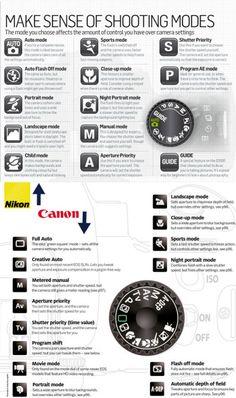 Head on: nikon vs canon cameras.