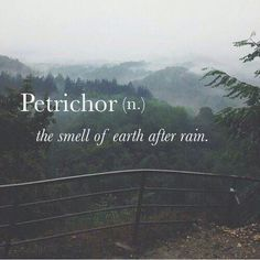 Immagine di rain, smell, and petrichor