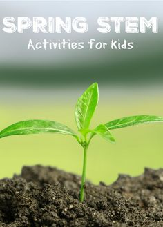 Spring STEM Activities for Kids Age 5+