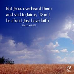But Jesus overheard them and said to Jairus, 'Don't be afraid. Just have faith.' - Mark 5:36