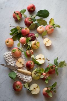 Apple varieties for Herb Apple Gruyere Scones Fruit And Veg, Fruits And Veggies, Fresh Fruit, Apple Fruit, Fruits Basket, Apples Photography, Food Photography Styling, Food Styling, Apple Photo