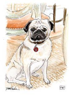 pve design pet portrait, Basil.