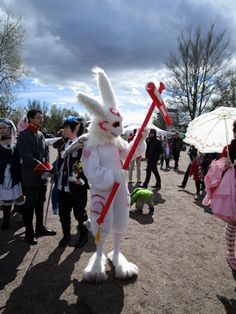 Työttömän valokuvaajan opas: Hanami 2015: Värikuvat, osa 1