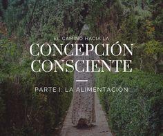 Concepción consciente I: la alimentación   De mi casa ¡al mundo!
