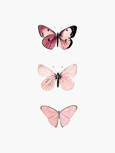 Butterfly Discover Pink Butterflies Sticker by haleyerin Millions of unique designs by independent artists. Find your thing. Butterfly Wallpaper Iphone, Iphone Background Wallpaper, Aesthetic Iphone Wallpaper, Pink Wallpaper, Aesthetic Wallpapers, Macbook Pro Wallpaper, Emoji Wallpaper, Butterfly Painting, Pink Butterfly