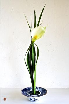Ikebana with Calla by Zen-Images Ikebana Flower Art by Baiko with Pin-It-Button on FineArtAmerica