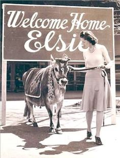 When you enter the Hamlet of Wallkill, you are greeted by the happy face of the Borden Company's mascot, Elsie the Cow. Vintage Advertisements, Vintage Ads, Welcome Back Home, Small Gazebo, Elsie The Cow, Cartoon Cow, Big Brown Eyes, Cow Decor, Everyone Knows