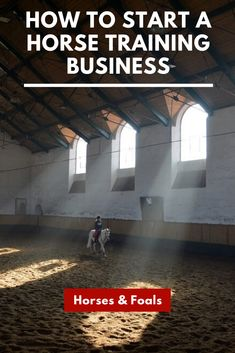 If you love horses and have had some luck working with your own horses, you may be wondering how you might become a horse trainer. Is certification necessary? Are there training programs you can atten Horse Training Tips, Horse Tips, Types Of Education, Dressage Horses, Riding Horses, Types Of Horses, Riding Lessons, Equestrian Outfits, Equestrian Fashion