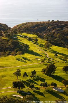 Torrey Pines Golf Course!
