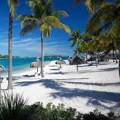 Sunset Key Cottages, a Luxury Collection Resort: 10 Best Hotels in Key West