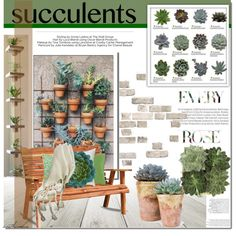 Succulent Living by arethaman on Polyvore featuring polyvore, interior, interiors, interior design, home, home decor, interior decorating, DutchCrafters, Surya and Jayson Home